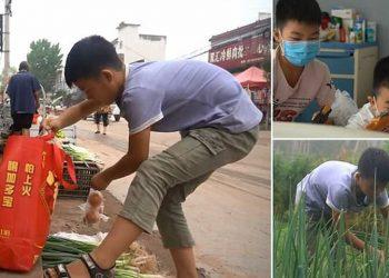 Мальчик выращивает и продает лук, чтобы спасти младшего брата (4фото)