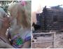 Мать, державшая 10 лет взаперти троих детей, подожгла дом и покончила с собой (4фото)