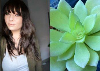 Женщина два года ухаживала за цветком, пока не поняла, что растение искусственное (3фото)