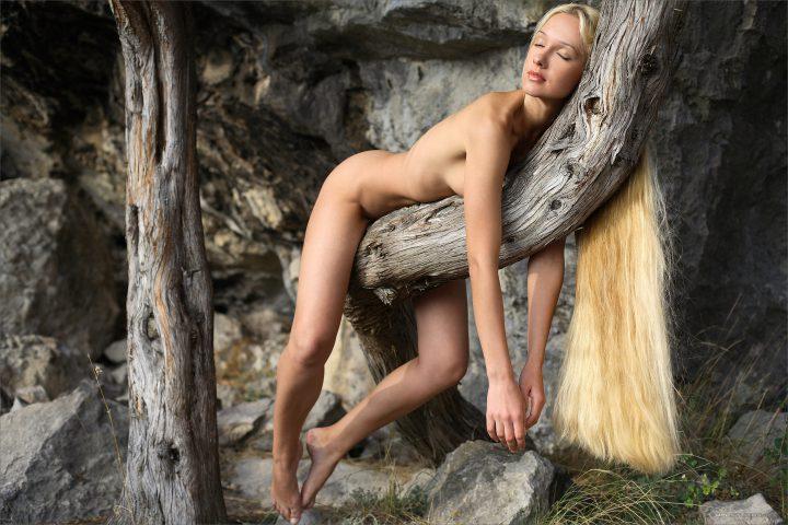 Голая блондинка легла на дерево и закрыла глаза.