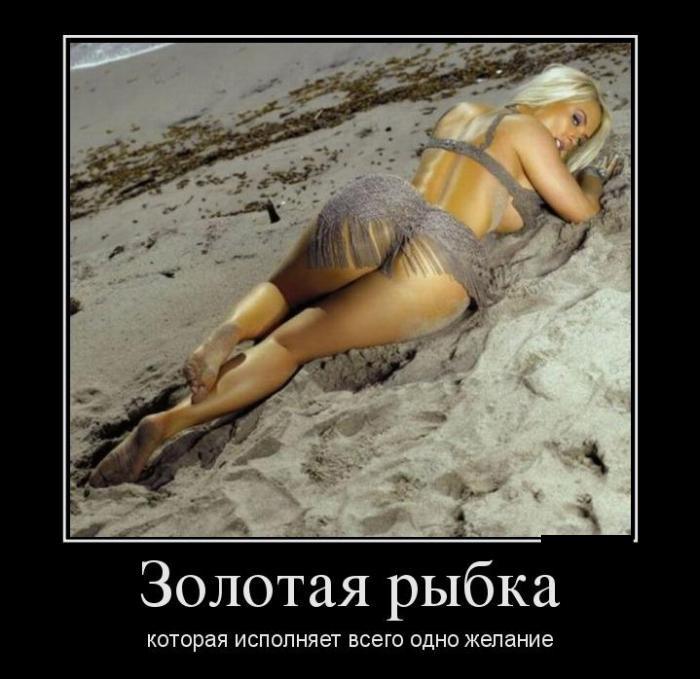 Золотая рыбка которая исполняет всего одно желание.