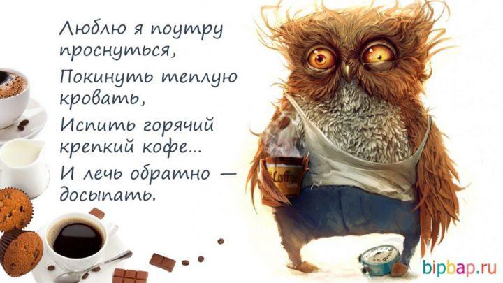 Люблю я поутру проснуться, Покинуть теплую кровать, Испить горячий крепкий кофе... И лечь обратно-досыпать.