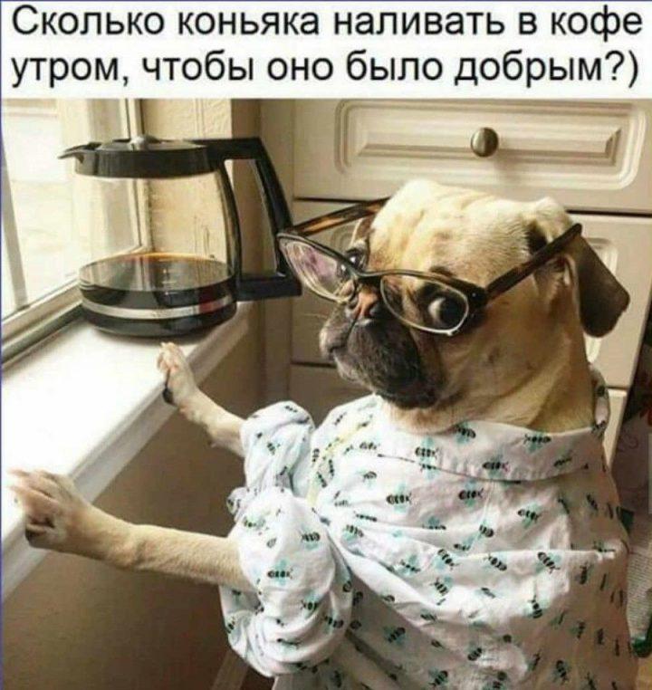 Сколько коньяка наливать в кофе утром, чтобы оно было добрым?)