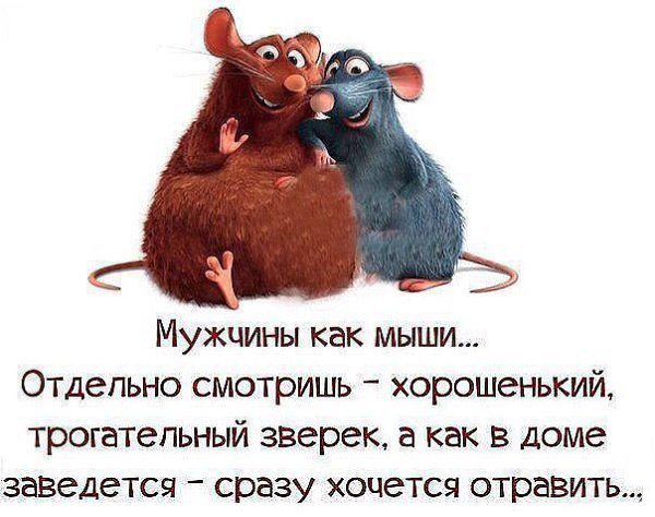 Мужчины как мыши... Отдельно смотришь-хорошенький, трогательный зверек, а как в доме заведется-сразу хочется отравить...