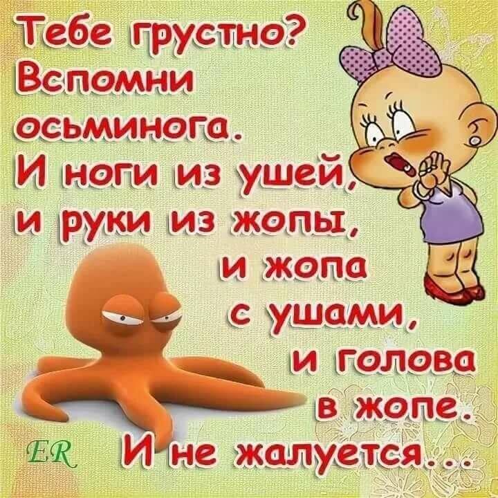 Тебе грустно? Вспомни осьминога. И ноги из ушей, И руки из жопы, и жопа с ушами, и голова в жопе. И не жалуется....