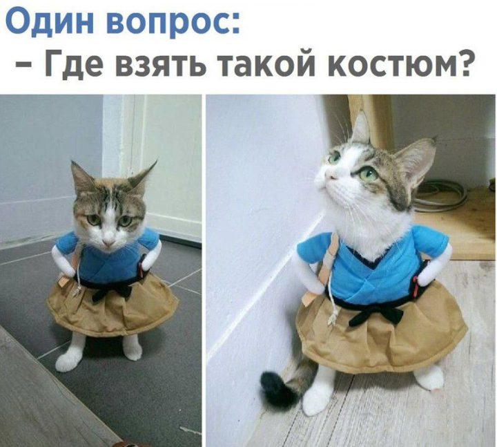 Один вопрос: -Где взять такой костюм?