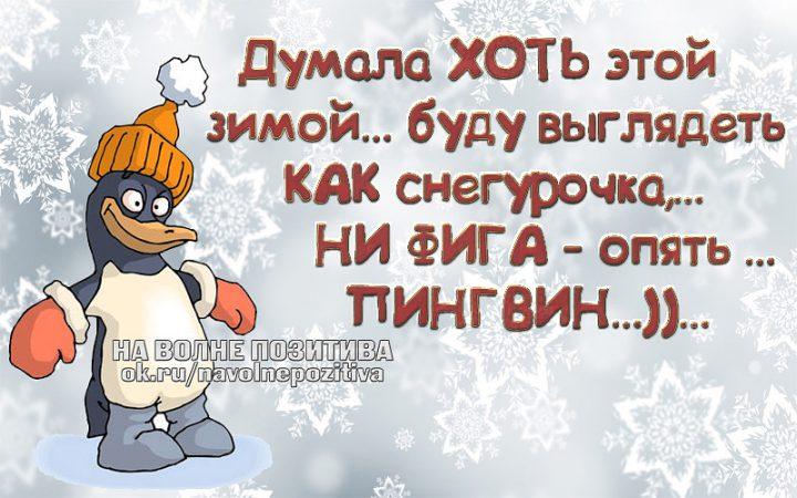 Думала хоть этой зимой... буду выглядеть как снегурочка,... ни фига-опять... пингвин...))....